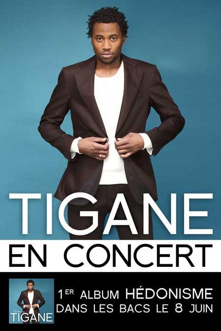 Tigane Flyer